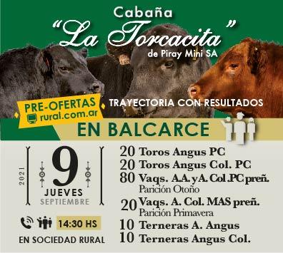 Remate Cabaña La Torcacita